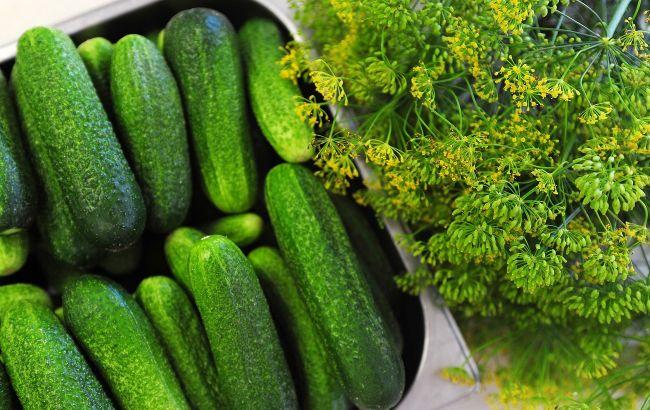 Лікарі розповіли, кому категорично не можна їсти огірки