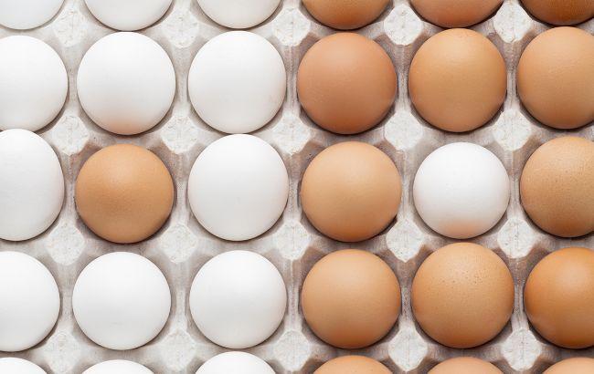 Готовимся к Пасхе: как быстро проверить яйца на пригодность