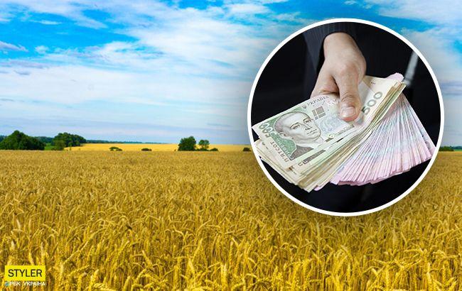 Сколько га земли мы сможем купить и когда: это важно знать