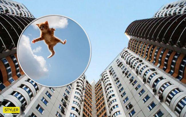Не в перший раз: в Харкові чоловік кидав з балкона кошенят