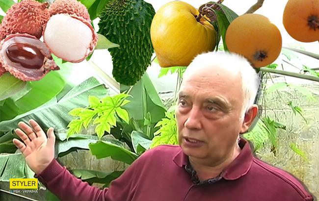 Фото: Анатолий Патий и его экзотические фрукты (Коллаж РБК-Украина)