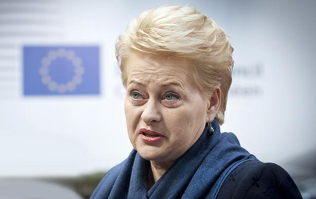 """Президент Литвы прогнозирует """"долгий путь"""" Украины в ЕС"""
