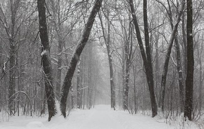 Доставайте самую теплую одежду: синоптик дала прогноз на 3 января