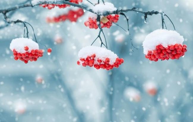 Метеорологи утверждают, что в этом году будет самая теплая зима за последние 30 лет