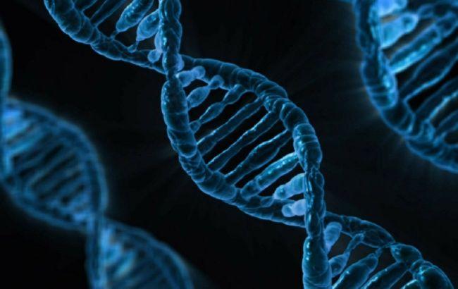 Генетики получили крупную сумму на воскрешение шерстистого мамонта