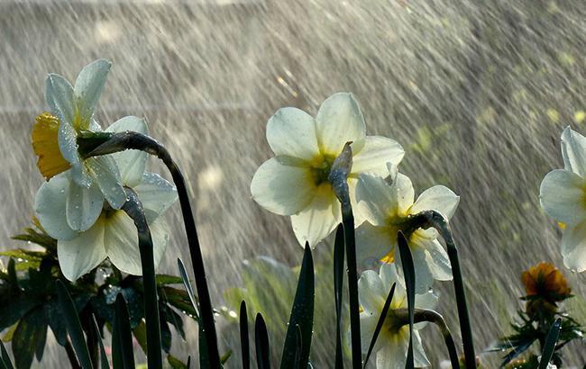 Похолодає: синоптик розповіла про погіршення погоди в неділю