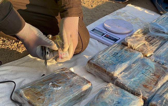 В Одесском порту в контейнере с бананами обнаружили почти 60 кг кокаина