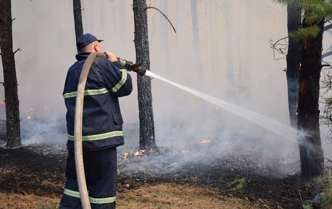 Лесной пожар в Николаевской области ликвидирован, - ГСЧС
