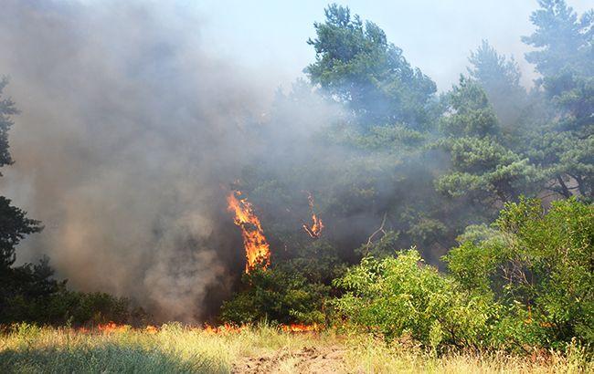 В Україні зберігається пожежна небезпека