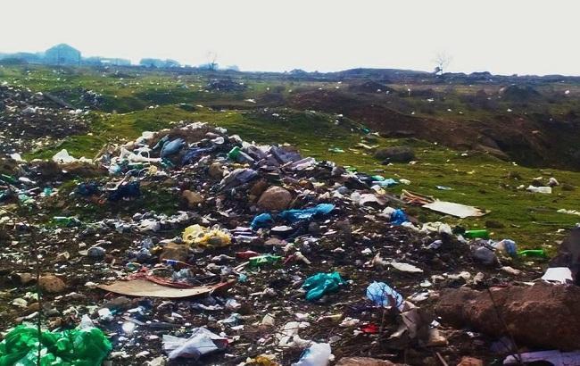 """""""Превращается в свалку"""": в сети показали горы мусора в оккупированном Крыму"""