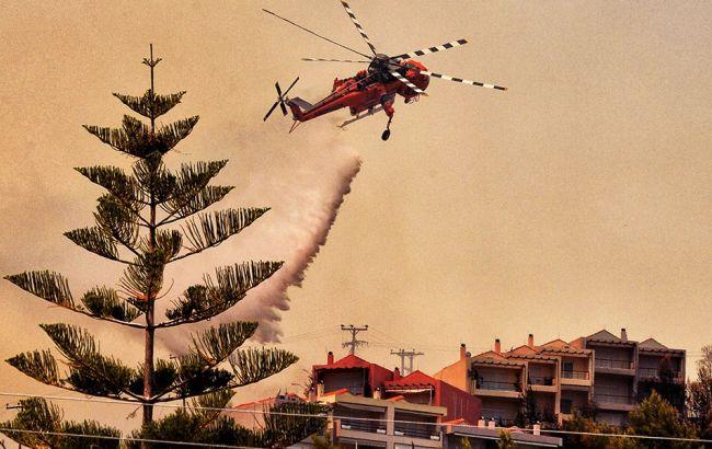 В Греции горят леса. Огонь угрожает пригородам Афин