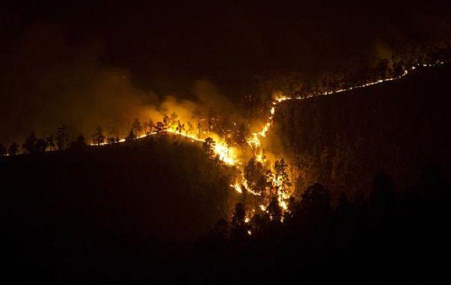 На Канарських островах горить близько тисячі гектарів лісу