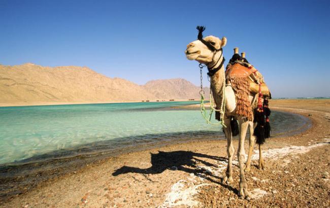 Фото: туризм у Єгипті