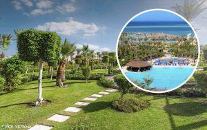 Удачный период для отпуска: путевки в Египет предлагают в два раза дешевле