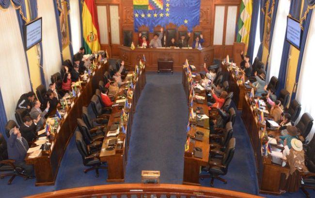 Сенат Болівії прийняв законопроект про скликання нових виборів