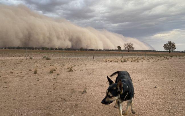 Австралию накрыли мощные пылевые бури