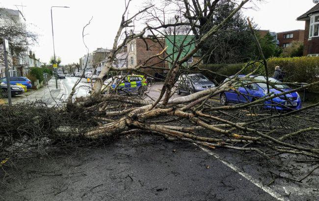 """На Британію обрушився шторм """"Белла"""": вітер до 170 км/год і знеструмлені будинки"""