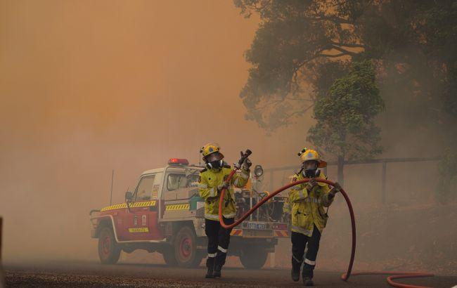 Австралію з лютого охопили лісові пожежі. Полум'я вирує біля найбільшого міста