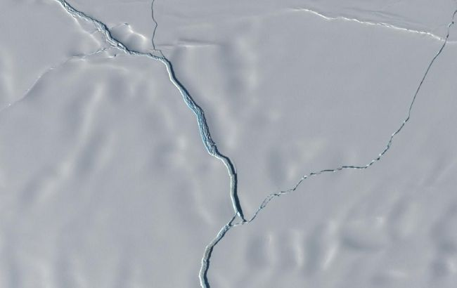 От Антарктиды откололся айсберг размером с Нью-Йорк: появилось видео