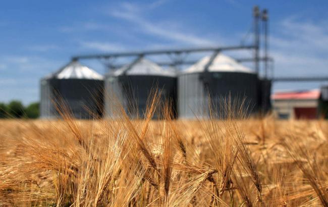 одним з експортних товарів в Україні є зерно