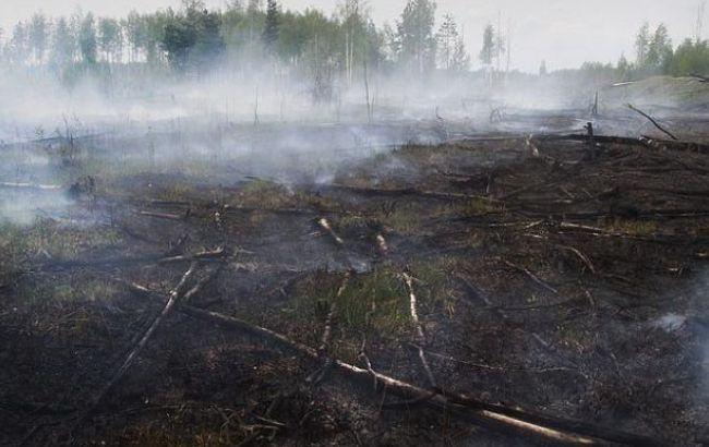 В Київській області продовжують горіти торфовища, - ДСНС