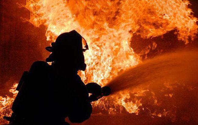 Спасатели потушили пожар на территории Софиевского парка