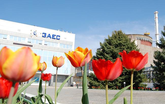 Фото: Запорожская АЭС (facebook.com/atom.gov.ua)