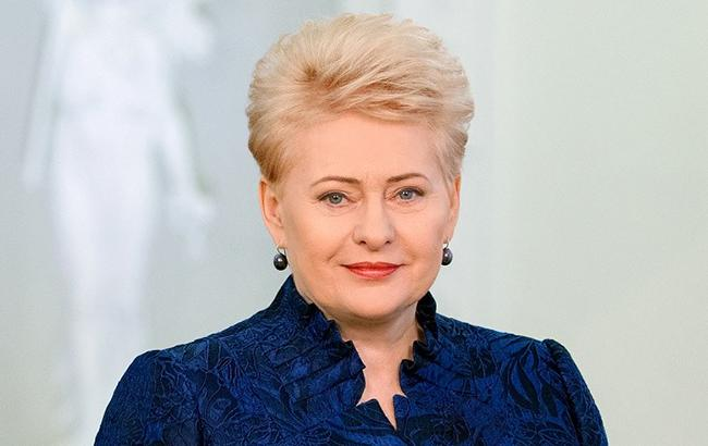 Прежний руководитель МИД Литвы раскритиковал Грибаускайте заречь вДавосе