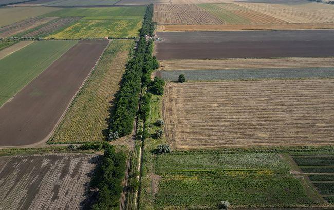 Ринок землі: скільки українців планують продати свої паї