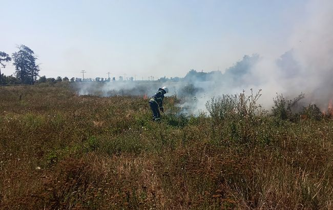 Синоптики предупредили о пожарной опасности почти по всей Украине