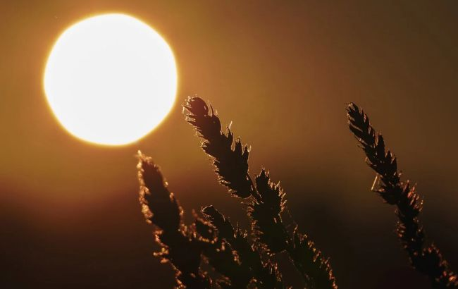 День зимнего солнцестояния: эти обряды помогут стать богатым и счастливым