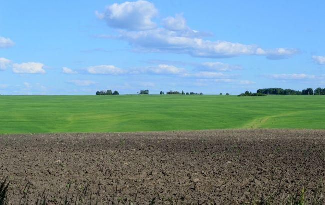 Власники паїв поділилися планами після зняття мораторію на продаж землі