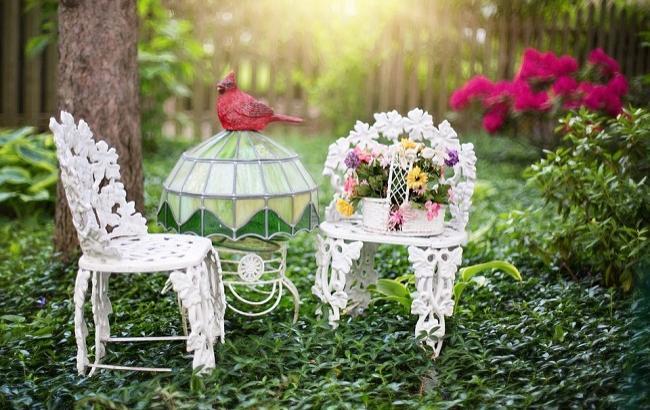 Фото: 23 мая - Всемирный день черепахи (pixabay.com/jill111)