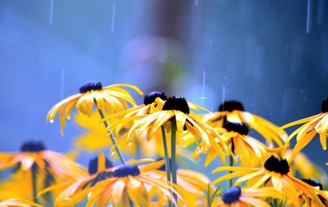 Насувається атмосферний фронт: синоптики розповіли, чи будуть дощі на вихідних