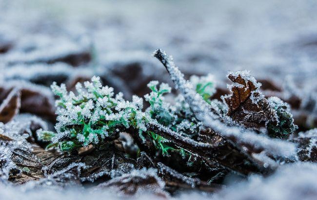 Зима близько: якої погоди чекати українцям 14 листопада