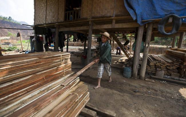 Фото: производство лесной продукции в мире (Twitter @FAOForestry)