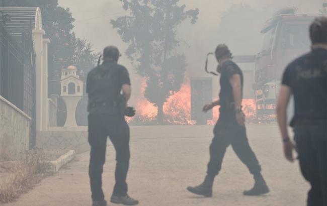 Пожежа біля Афін: число жертв зросло до 79 людей