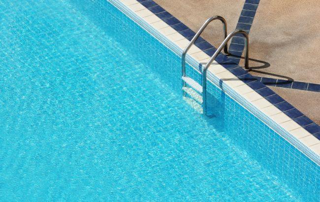 Утка с утятами устроила заплыв в бассейне во Львове: милое фото