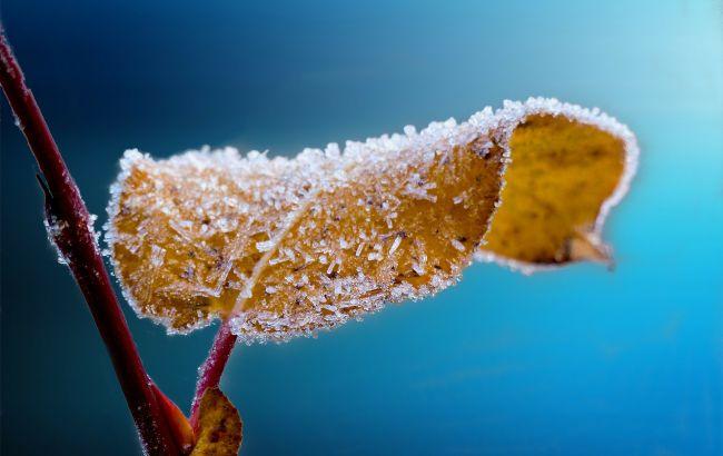 Будет солнечно, но ночью ударят морозы: прогноз погоды в Украине на выходные