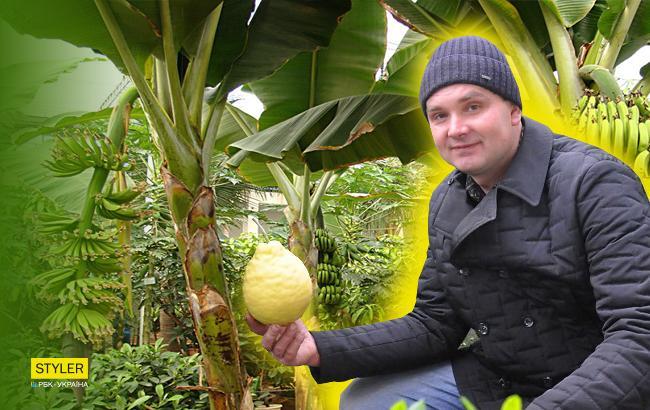 Житель Буковины построил теплицу для тропического сада (видео)