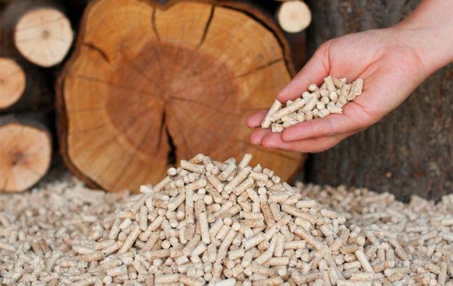Фото: субсидию можно оформить на закупку угля, дров и брикетов