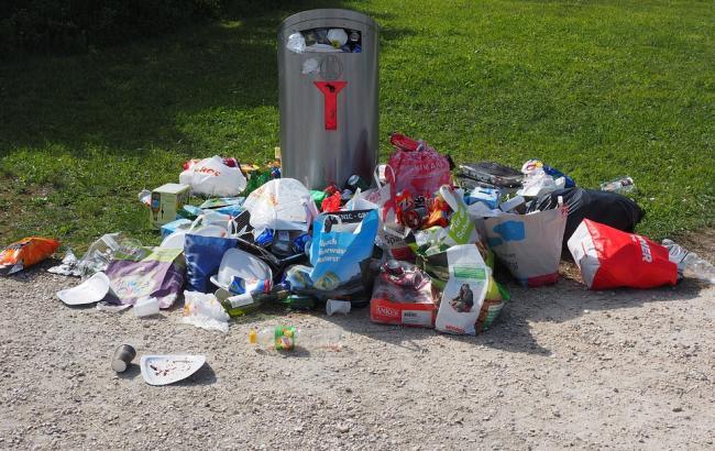 "Львовский мусор ""устроил"" протест посреди дороги"