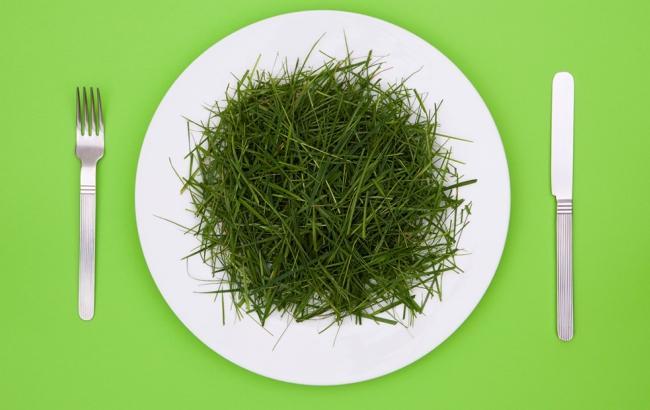 Фото: Кримчанам запропонували перейти на траву (prevention.com)