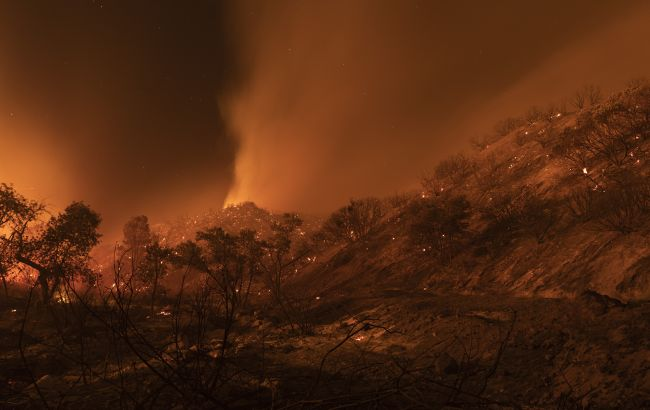 У Росії лісові пожежі. До гасіння вогню задіяли авіацію