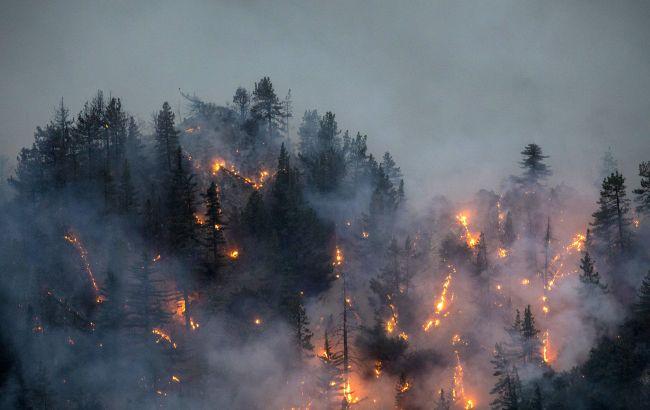 Пожары в Калифорнии угрожают жилым районам: тысячи людей эвакуировали