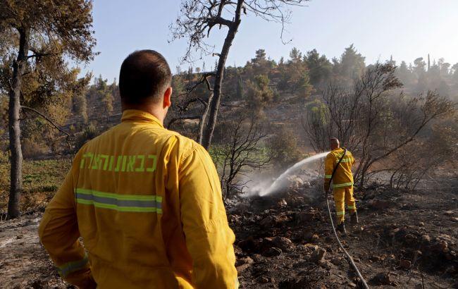 В пригороде Афин началась эвакуация из-за лесных пожаров