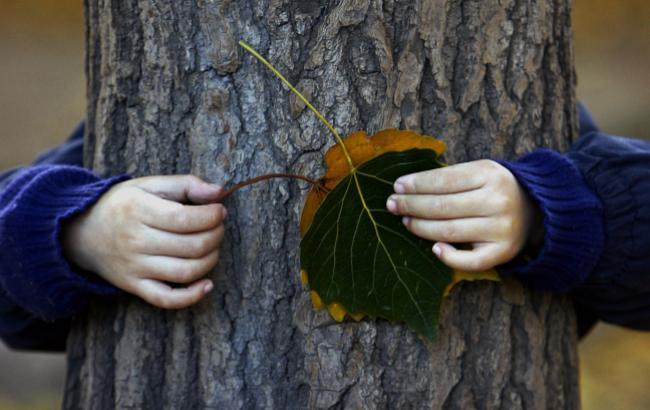 Зима с осенью борется: какой погоды ждать украинцам 7 ноября
