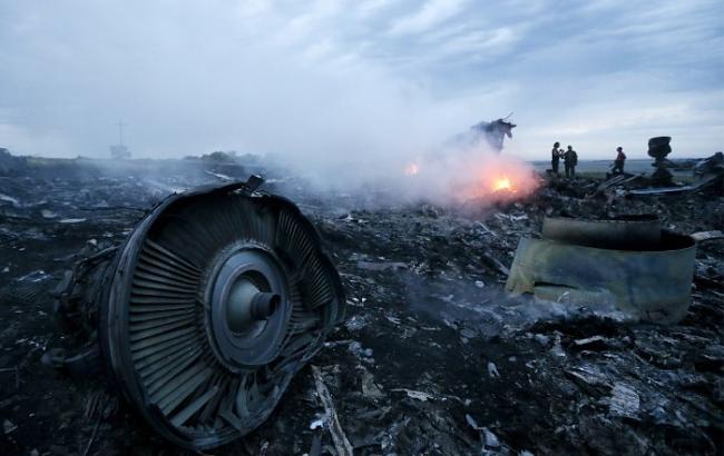 Фото: уламки малайзійського Boeing на Донбасі