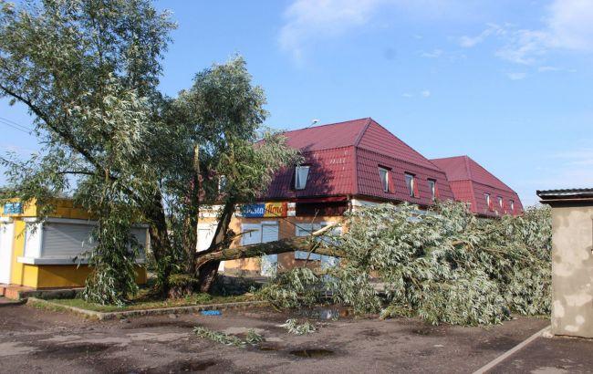 У Волинській області вітер зривав дахи з будинків і валив дерева