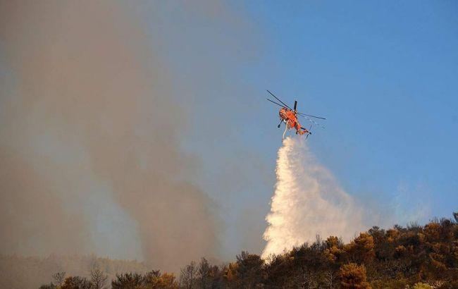 Біля Афін сталась масштабна лісова пожежа